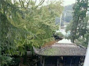 岳池中学具有一百多年的王字楼塌了