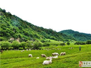 【牧马・牧羊】――题关山景区摄影图丁壮仁原创(两首)