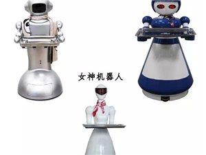 �L口上的�C器人除了新奇�需有品�|