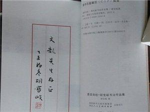 祝贺胡宝岐老师《墨读诗经》出版