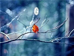 收藏 ;立冬了,手握�@份�^冬指南好�^冬!