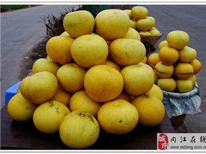 内江的朋友可以买到重庆梁平柚子了
