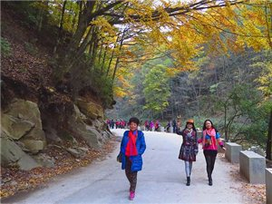 【原创】相约光雾山、共享红叶情~~~光雾山的红叶(图片)
