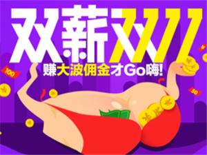 双11微店黑马:顺逛平台成第一店