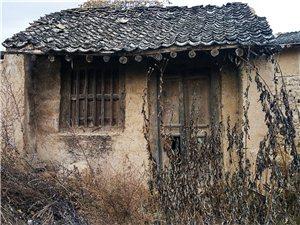 我来自张家川农村,我是大山的儿子,我深情的爱着我的家乡。