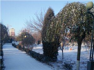 《七绝; 雪韵澳门金沙城中心》