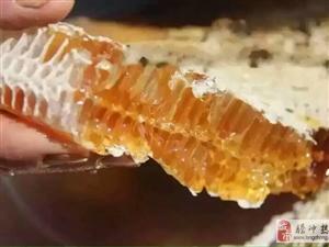 出售纯野生蜂蜜