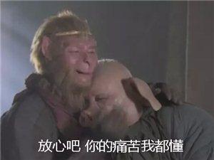 北上广不相信眼泪,大义县暖气白费...