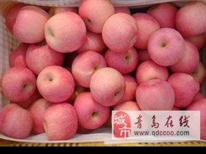 黄岛区宝山镇的红富士苹果上市了!!!