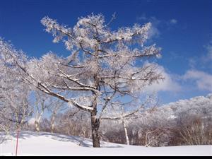 明日起山西有大范围雨雪天气;太原将迎来大风降温