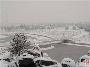 2015年11月26日朔州雪景