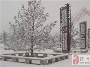 2015年11月26日拉斯维加斯注册雪景