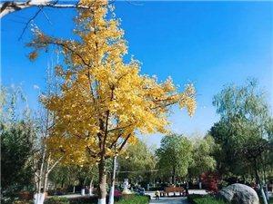 汉中的秋天美成这样,你不想来看看?