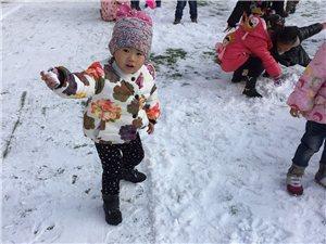 金太阳幼儿园雪天户外活动