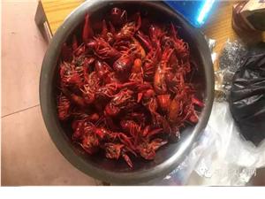 【美食推荐】11月27日(本周五)火辣辣的―虾讲究