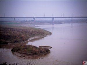 渭河向东流