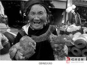 """临汾骄傲!张旦获""""美丽中国""""摄影大赛一等奖 作品展"""