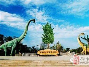 南阳最高端大气上档次的旅游宣传片亮相,30个景点,赌博注册网站占5个!