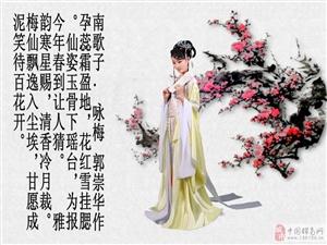 诗雨咏梅音画鉴赏