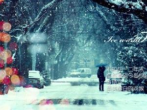大雪兆丰年,无雪要遭殃