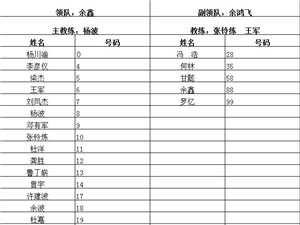 2015-2016广安足球联赛邻水新城大名单