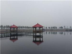 【香林水吧】垂钓租赁:地址:龙8国际市来集镇郭岗新村村委会旁