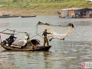大美汉寿(7)沅水河上打渔船