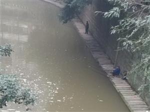 这条河里钓起来的鱼敢吃么?