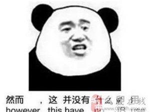 盘点2015年红遍大江南北的网络词语,你到底知道多少?