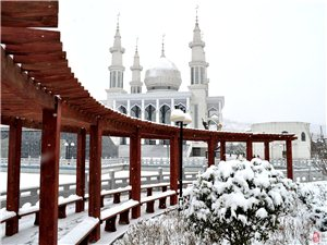 冬天的风情园有另外一番精彩――冬之韵