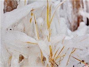 石脑的冰瀑是冬季献给各位前来欣赏的绝好去处,它的形成给人们以欢乐...