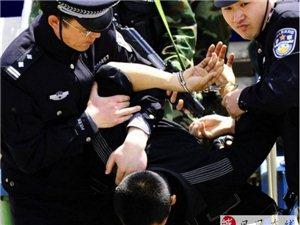 永利娱乐官网警察身手了得,20分钟抓三名盗贼!