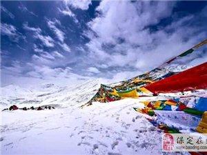 我想和你一起去�^藏�v新年