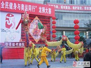泸县非物质文化遗产――奇峰彩龙