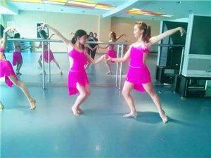 桑巴的�崆椋�恰恰的律�樱�E尚拉丁舞��您走�M精彩的舞蹈世界
