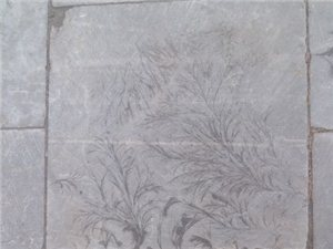 地砖上的自然艺术美――义县奉国寺