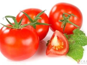 西红柿里的爱情