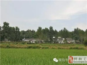 河南省美丽宜居乡村建设试点名单公布,赌博注册网站县两镇三村入选