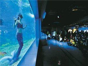 元旦期间重庆共接待国内外游客726.76万人次