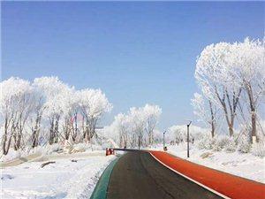 白城生态新区被列为吉林省低碳社区试点