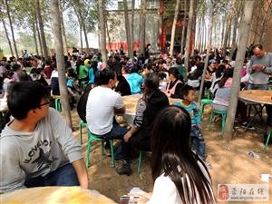 荥阳海潮传媒婚庆公司举办的花轿婚礼广受群众欢迎