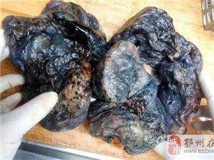 触目惊心;|;这哪里是肺,明明是黑炭!吸烟的都看看吧