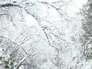 传说中的灰千雪景,美美嗒,么么嗒……