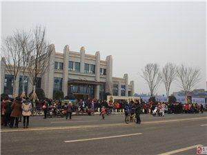 凤凰城售楼部亮相,数百人排起长队领年货