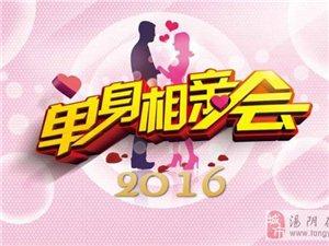 2016年新濠天地赌博网址新年相亲会报名通道开启