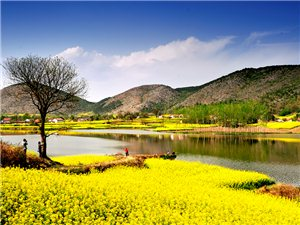 2016中国最美油菜花海汉中旅游文化节