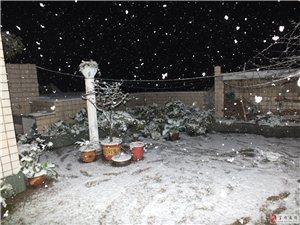 2016年――富�-雪