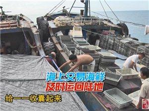 《台海漂流记》终结篇:90后美女出海3天变屌丝