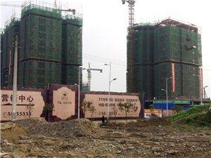 凤凰华城项目最新进展