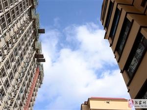 金亿・盛世阿阳,张家川迄今为止唯一的高端商住小区。